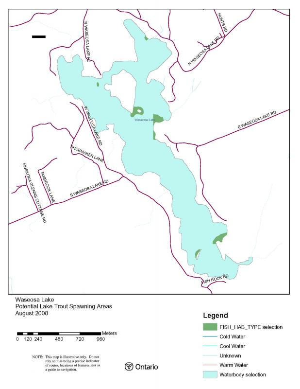 Potential Lake Trout spawning grounds in Wasesosa
